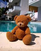 Teddy on vacation — Stock Photo