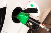 Blue Fuel nozzle add fuel in car in gas staion  — Stock Photo