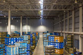 Interior of new large and modern warehouse space  — Stock Photo