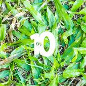 Green grass field. Seamless vector.  — Stock vektor