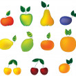 Stock Vector: Fruits