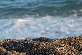 Close up of pebble at seacoast in Turkey (Kemer region) — Stock Photo