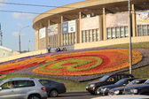 A giant flowerbed in the streets of Moscow, Russia — Stock Photo