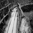 Stock Photo: Wooden bridge
