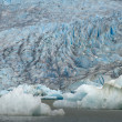 The Juneau Mendenhall Glacier in Alaska - Stock Photo