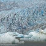 The Juneau Mendenhall Glacier in Alaska — Stock Photo