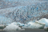 The Juneau Mendenhall Glacier in Alaska — Stock Photo