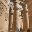 Egypt Luxor Temple view — Stock Photo #19132039