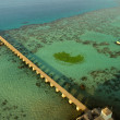 Colorful red sea reef and wharf aerial view — Stock Photo