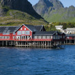 Red houses fisherman's village Lofoten Island Norway — Stock Photo #20185875