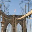 Royalty-Free Stock Photo: New York Brooklyn Bridge Cables