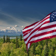 Usa American flag stars and stripes on mount McKinley Alaska background — Stockfoto