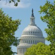 Stock Photo: Washington DC Capital on deep blue sky background