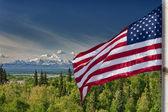 Usa americká vlajka hvězdy a pruhy na mount mckinley aljaška pozadí — Stock fotografie