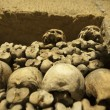 Paris Catacombs Skulls and bones — Stock Photo