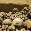 Paris Catacombs Skulls and bones — Stock Photo