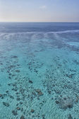 Reef aerial view — Stock Photo
