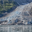 Glacier view in Alaska — Stock Photo #36645459