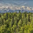 Stock Photo: Denali Park Mount Mc Kinley panorama