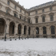 Paris While Snowing — Stock Photo #37807873