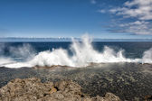 Tonga Blow Holes — Stock Photo