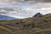 冰岛野生园林 — 图库照片