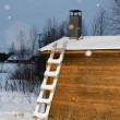 Stock Photo: Ladder on wooden hut lapland in winter