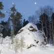 Stock Photo: Lapland forest in winter