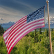 Usa American flag stars and stripes on mount McKinley background — Stock Photo #39243339