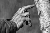 Hand of man on a tree in black and white — Stock Photo