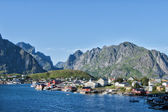 Lofoten Island village red houses — Stockfoto