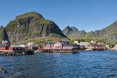 Lofoten Island village red houses — Stock Photo