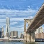 New York Manhattan view with brooklyn bridge — Stock Photo #40372093