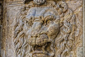 Palazzo pitti lion  — Stock Photo
