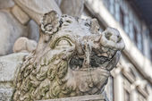 Piazza firenze della signoria statua — Foto Stock