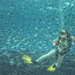 Постер, плакат: A scuba diver Inside a school of fish underwater