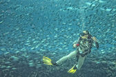 A scuba diver Inside a school of fish underwater — Stock Photo