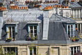 Paris roofs and cityview — ストック写真