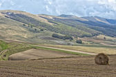 Castelluccio Umbra Italy landscape — Stock Photo
