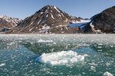 Vista de glaciar de spitzbergen svalbard con pequeño iceberg — Foto de Stock