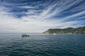 Vernazza cinque terre fishing boat by the sea — Stock Photo