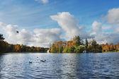 Autumn in Tsarskoe Selo — Stock Photo
