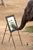 Painting elephant — Stock Photo