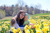 Mother with her daughter in daffodil field — Photo