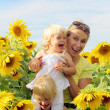Family in sunflowers field — Stock Photo
