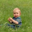Adorable toddler boy sitting on the meadow — Stock Photo #42894969