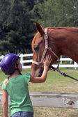 Cute little girl petting the horse — Stock Photo