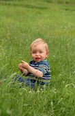 Adorable toddler boy sitting on the meadow — Stock Photo