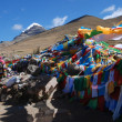 Praying flags in Tibet - Stock Photo