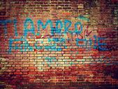 A Lovely Brick Wall in Verona — Stock Photo